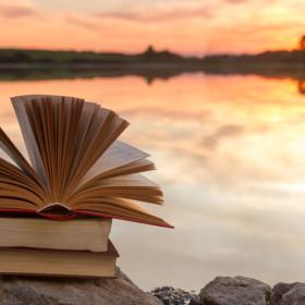 Reducér dine udgifter til bøger: Shop på nettet