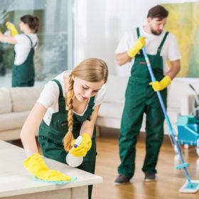 Der er mange penge at spare på rengøringsartikler online
