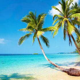 Din smartphone kan spare dig for mange penge – på rejser